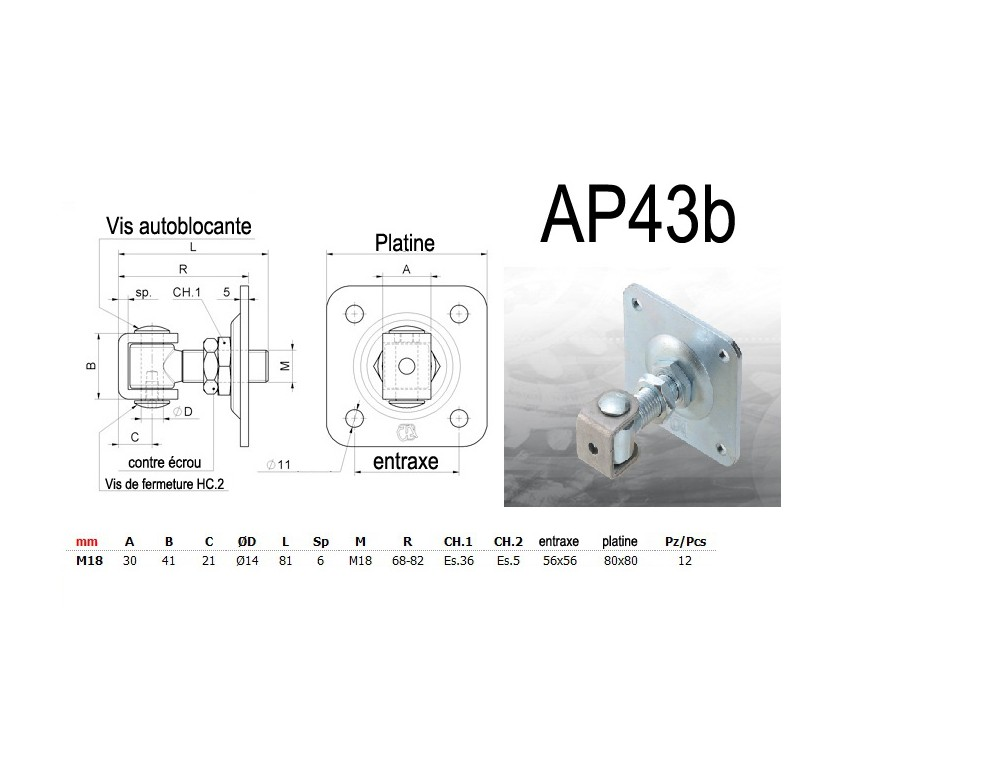 ap43b